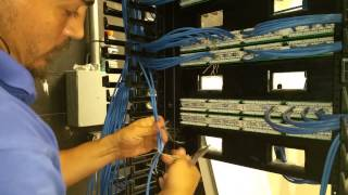 Cat6 cable terminations patch panel