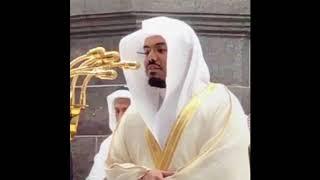 سورة البقرة الشيخ ياسر الدوسري تلاوة خاشعة جودة عالية HD