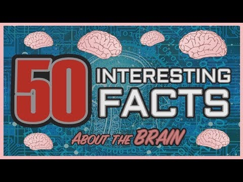 50 Interesting Facts about the Human Brain