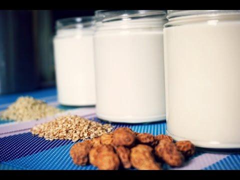 3 Dairy Free Milk Alternatives | Nut Free | Recipes
