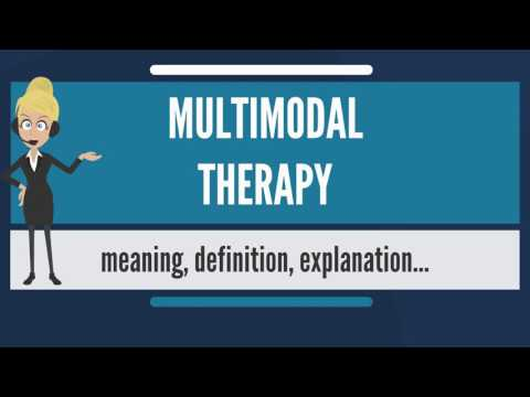 What is MULTIMODAL THERAPY? What does MULTIMODAL THERAPY mean? MULTIMODAL THERAPY meaning