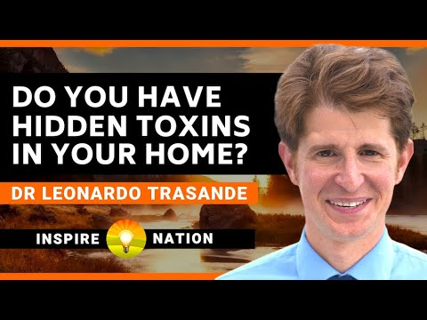 Eliminating HIDDEN Toxins In Your Home! - How To Check For And Get Rid Of Toxins In Your Household