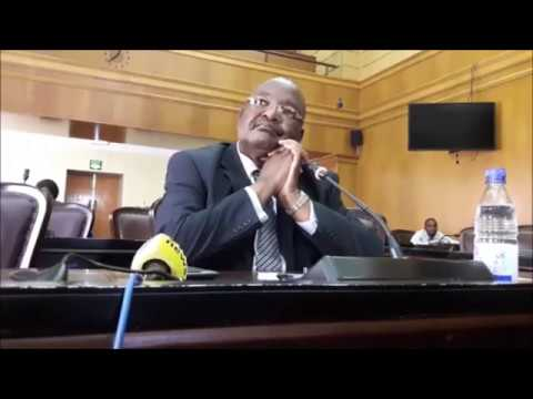 Arrogant Obert Mpofu appearing before the committee on Mines and Energy