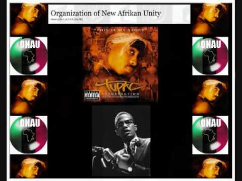 ONAU RBG Tupac - National Chairman for the New Afrikan Panther Party 1989 pt 1 of 2
