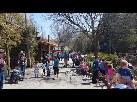 Cincinnati Zoo near Rhino exhibit