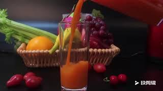 HONGXION 원액기 과일 채소 원액 착즙기