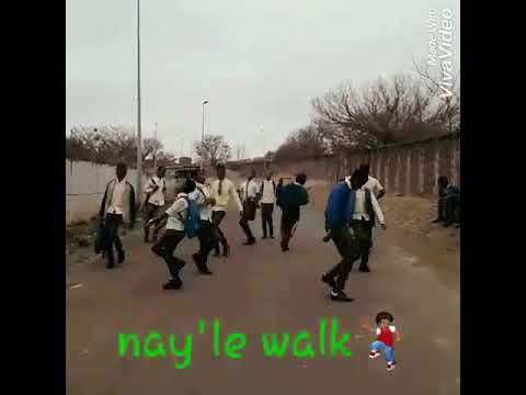 South African Dance walk of life| Students Dancing