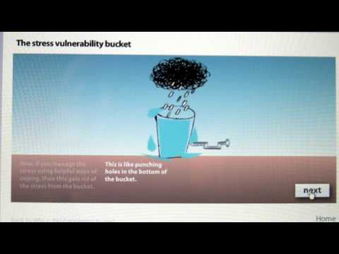 The Stress Vulnerability Bucket