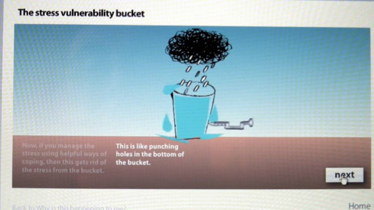 The Stress Vulnerability Bucket - YouTube