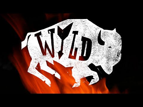 """Wyld"" - The Wild Wyoming Story of Little People With Great Spirit"
