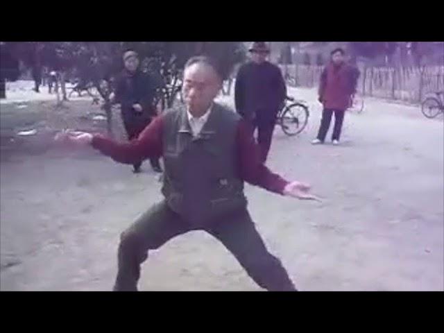 Chen Dong Shan  - Tai Chi style Chen Xiaojia Yilu