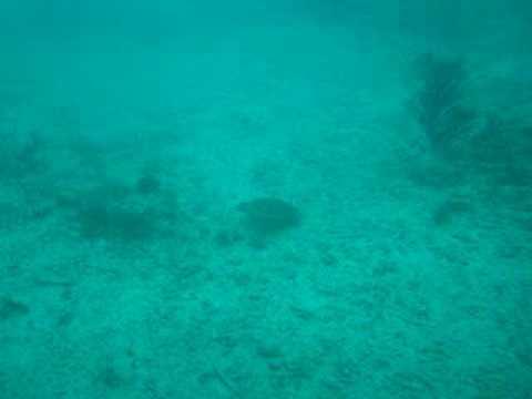 cancun subsea