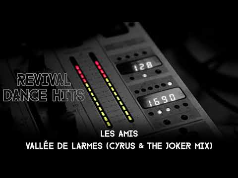 Les Amis - Vallée De Larmes (Cyrus & The Joker Mix) [HQ]