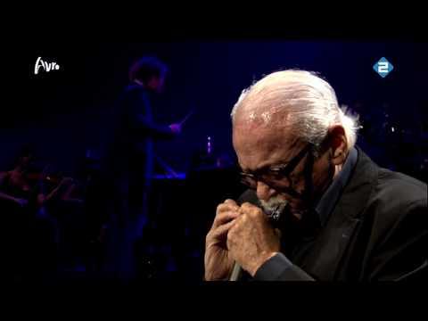 Toots Thielemans - Bluesette