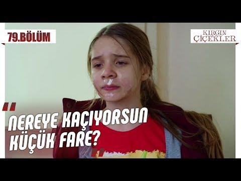 Büşra, Kemal'in Elinden Kurtuluyor Mu? - Kırgın Çiçekler 79.Bölüm