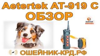 Обзор Aetertek 919 C - профессиональный электронный ошейник для собак