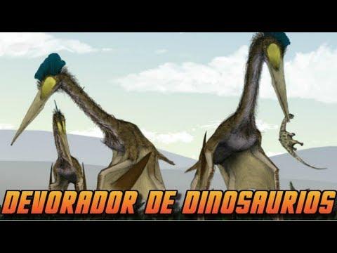 Descubren predador gigante que se alimentaba de #Dinosaurios