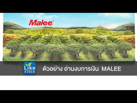 ตัวอย่าง อ่านงบการเงิน MALEE - Mr.LikeStock