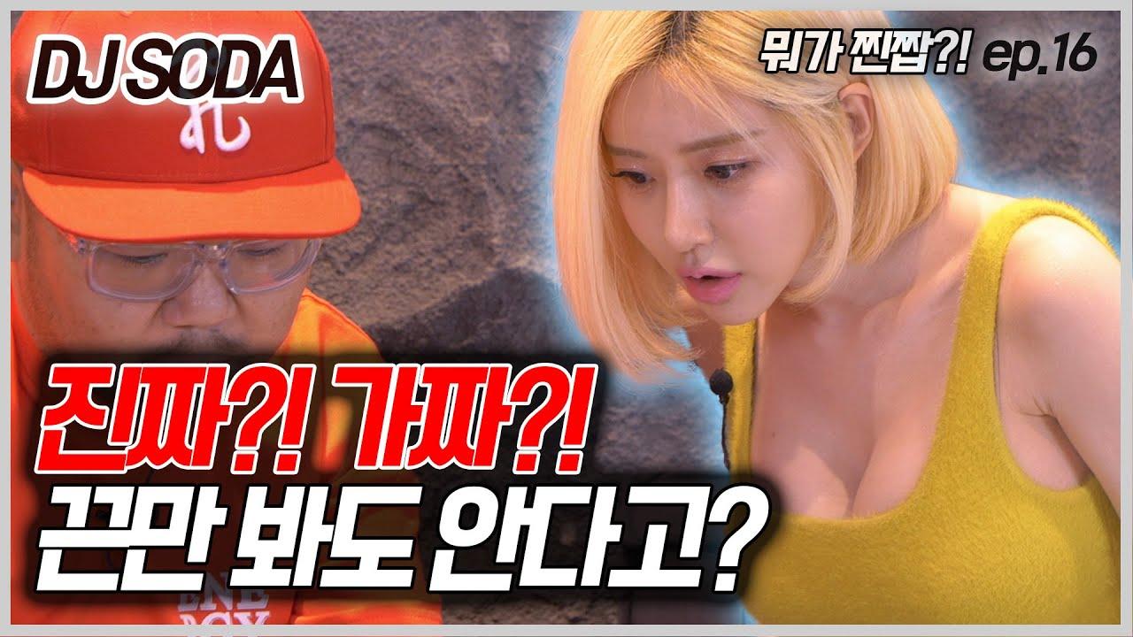 [뭐가찐짭] DJ소다 : 에어조던 성덕인증 통과?? (DJ SODA,코트퍼플,페르커)