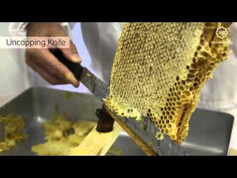 Beekeeping - Equipment