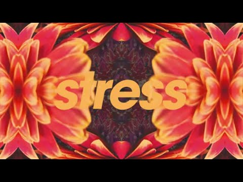 Tycho - Stress (Official Audio)