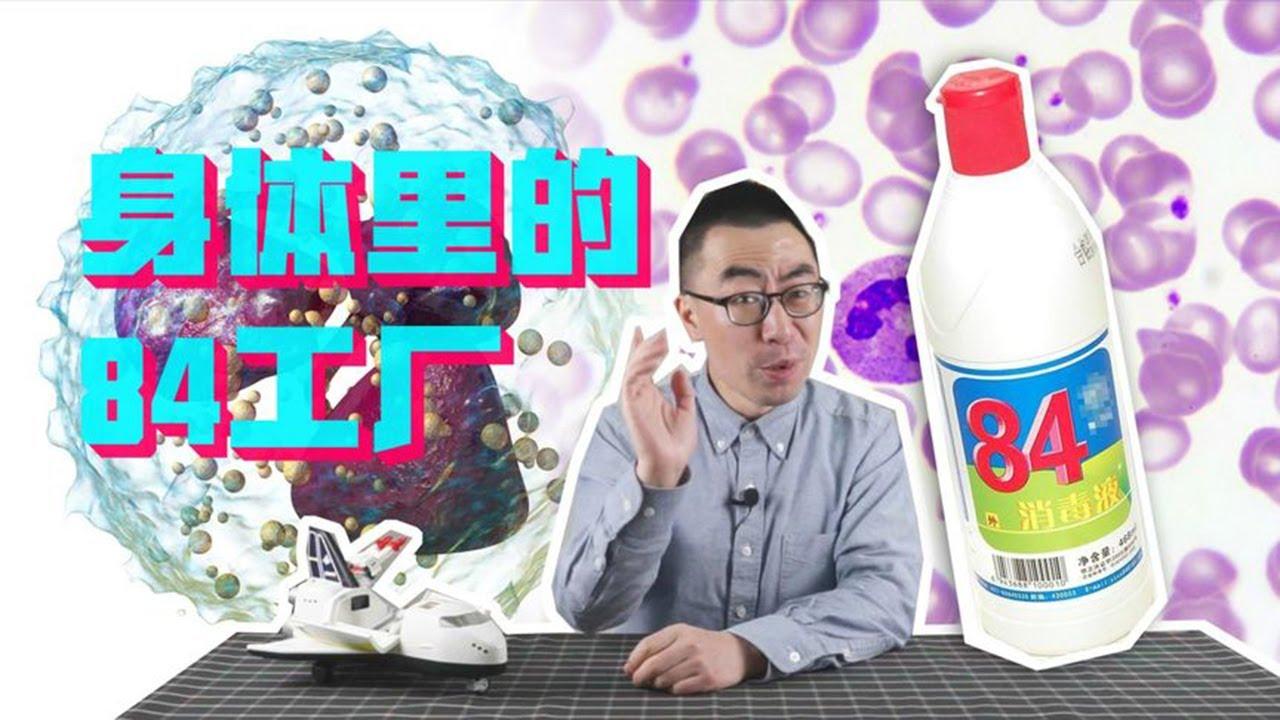 """说出来你可能不相信,我们的细胞也是用""""84消毒液"""",来杀灭细菌的!【科学火箭叔】"""