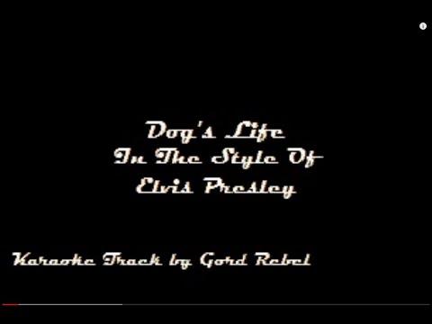Dog's Life - Elvis Presley - Karaoke Online Version