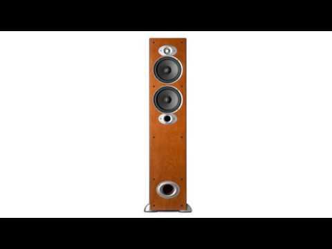 Must See !! Polk Audio RTI A5 Floorstanding Speaker Short Review
