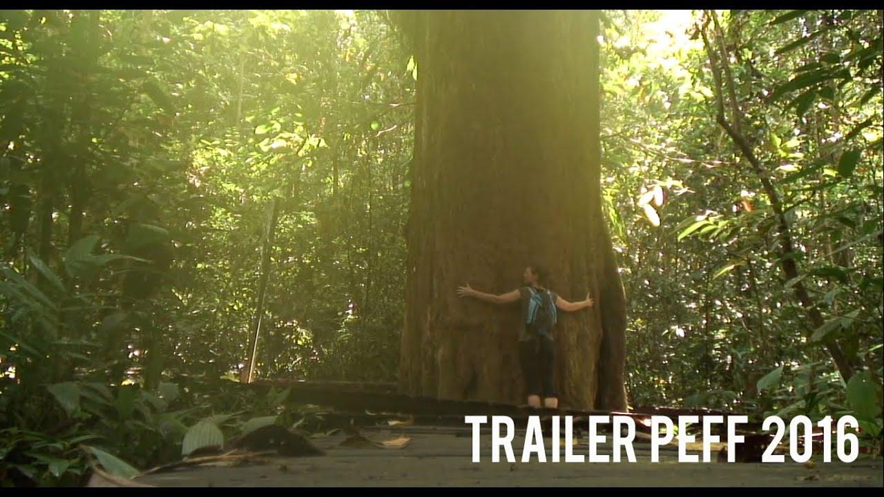 Trailer PEFF 2016 - Festival Internacional de Cine Ambiental