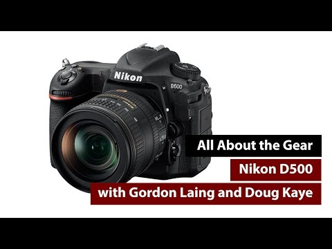 Nikon D500 Review - All About the Gear