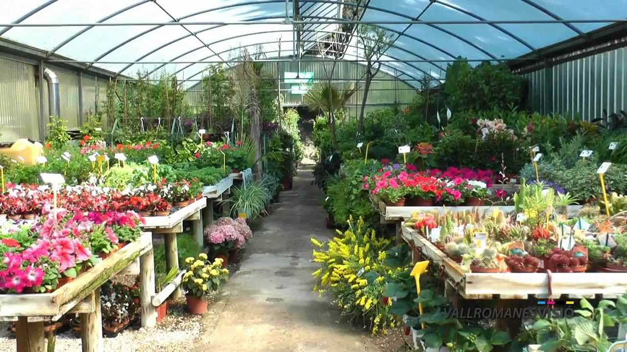 Garden center vallromanesverd centro de jardiner a hd for Home depot jardineria