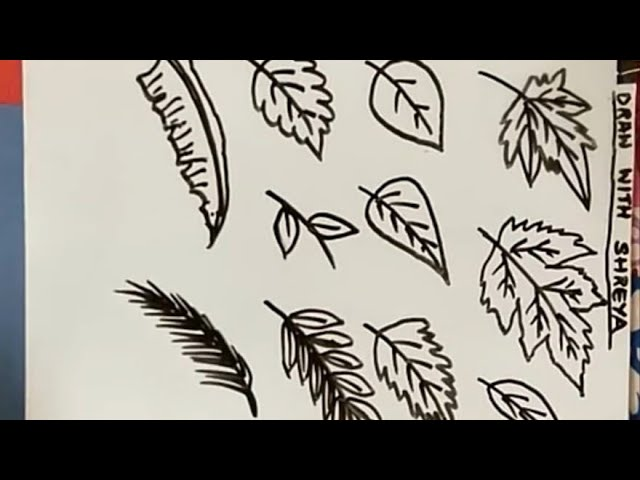 How To Draw Different Types Of Leaves In Very Easy Steps Part 1 Check Part 2 Link Below Youtube