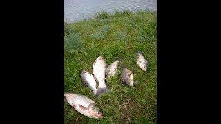рыбалка в Алматинской области. платные озера.
