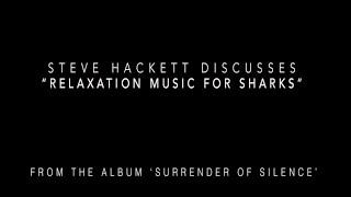 "Steve Hackett on ""Relaxation Music for Sharks"" from the album 'Surrender of Silence'."