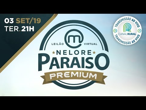 Lote 03 (Luna do Nelore Paraíso - MRJP 482)