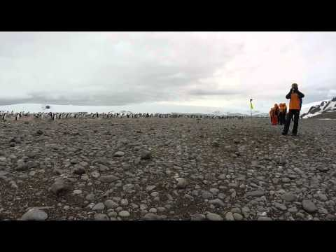 GoPro Antarctica