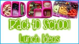3 EASY Back to School Lunch Ideas | Alexa's DIY Life