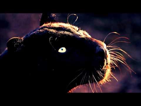 Cat Power - Cherokee (Nicolas Jaar Remix)