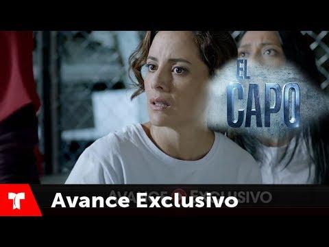 el capo 2 hd