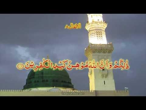 Free Download Mp3 Quran Qari Syed Sadaqat Ali