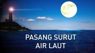 Gambar cover Pasang Surut. Bagaimana Gravitasi Bulan Mampu Mengangkat Jutaan Ton Air Laut