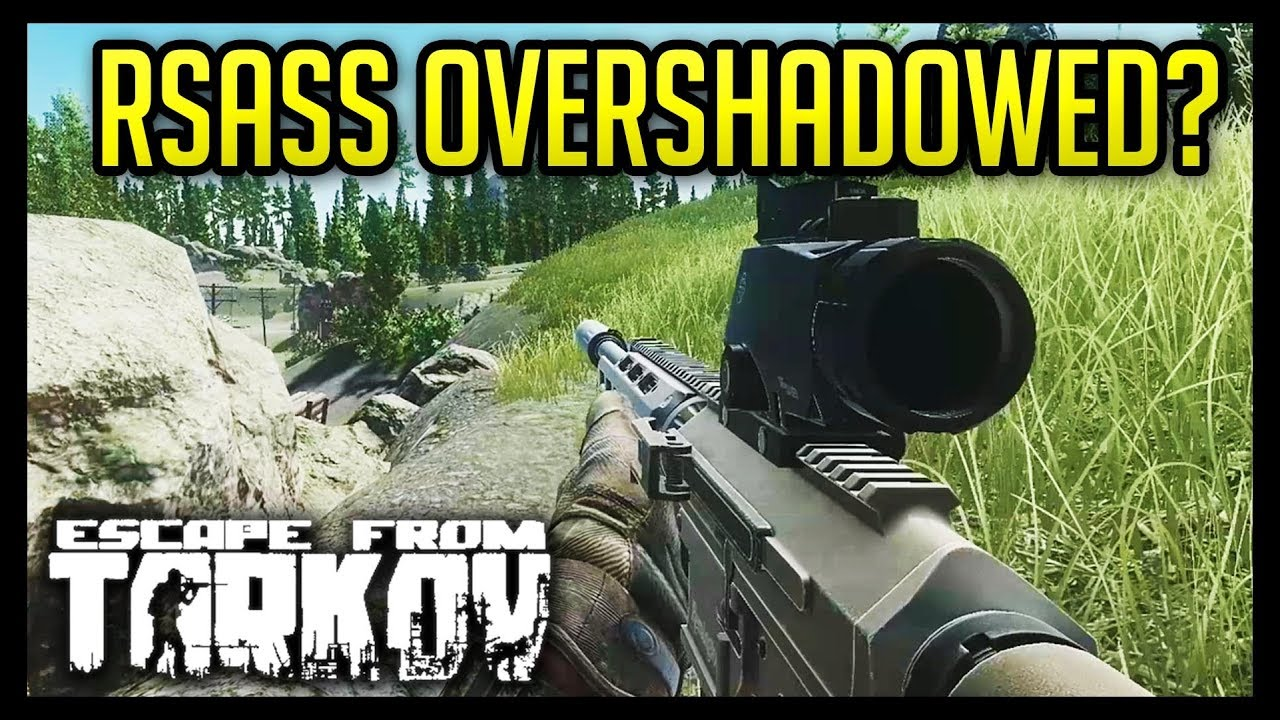 Is the RSASS Overshadowed? - Escape from Tarkov