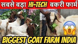 केवल 2 बकरी से शुरू किया था..आज है करोड़ों का टर्नओवर🔥Biggest Goat Farm in India African Boer,Beetal