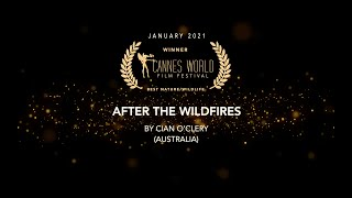 AFTER THE WILDFIRES - directed by Cian O'Clery (Trailer)