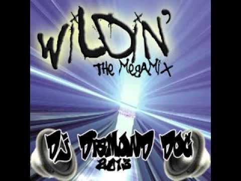Wildin' (the megamix)