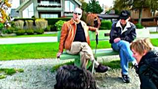 Bouvier des Flandres Dog Breed