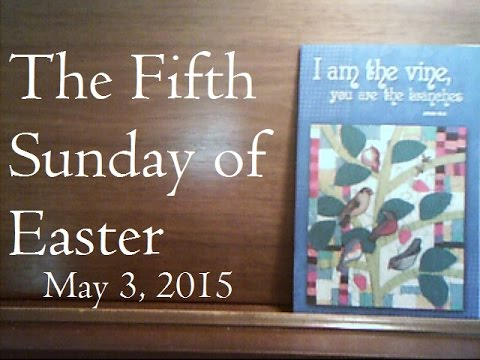 """""""I am the vine, you are the branches""""-John 15:5. The Fifth Sunday of Easter - May 3 2015"""