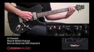 Bad Cat Black Cat 30R Head with b3 Phoenix and Fender Custom Shop NOS Strat