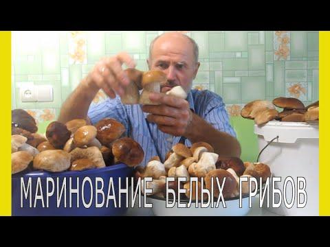 Вопрос: Какие виды грибов допускаются для маринования?