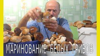 Грибы.Как мариновать белые грибы.Маринование грибов. Простой рецепт маринования грибов